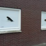 Opening Wadudu insecten centrum Beilen
