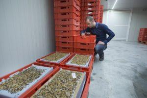Van Subsidieadviesbureau naar een Insectenkwekerij